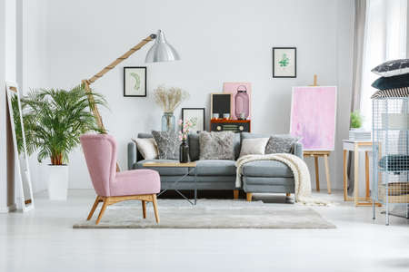 Photo pour Plant in white pot and mirror in living room with vintage furnishings and designer's lamp - image libre de droit