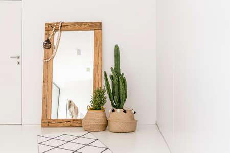 Foto de Enormous mirror accompanied by plants in the living room - Imagen libre de derechos