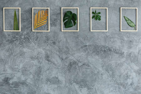 Photo for Fresh leaves in bright wooden frames hanging on grey wall - Royalty Free Image