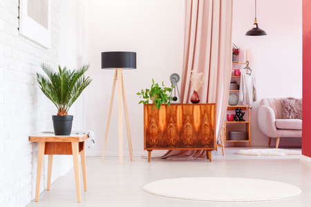 Photo for Plant on wooden stool and rustic cupboard in living room interior with white round rug and lamp near dressing room - Royalty Free Image