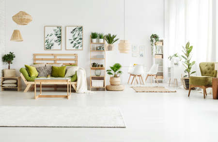 Foto de Bright rug, leaves posters and pouf in spacious green apartment interior with sofa, plants and armchair - Imagen libre de derechos