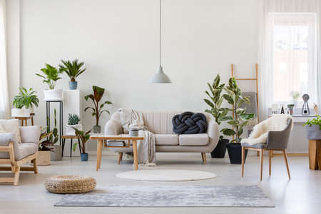 Photo pour Pouf and gray armchair in spacious living room interior with plants and sofa near wooden table - image libre de droit