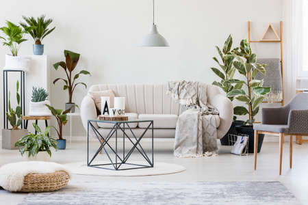 Foto de Pouf and grey armchair in botanic living room interior with beige sofa near plants and table on rug - Imagen libre de derechos
