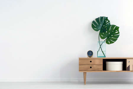 Photo for Monstera leaves in glass vase on wooden cupboard against white wall with copy space in empty room interior - Royalty Free Image