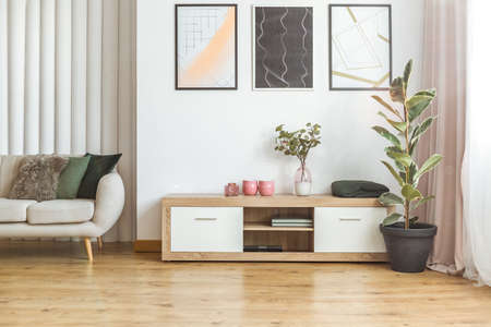 Photo for Elegant living room interior with wooden cupboard standing between a tall ficus plant and beige couch - Royalty Free Image