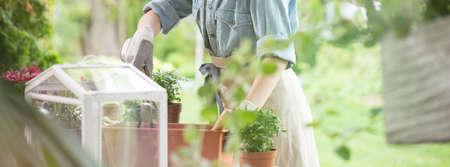 Photo pour Gardener using rake on dirt from a flowerpot - image libre de droit