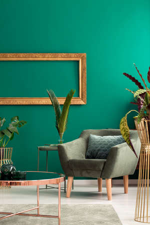 Photo pour Modern armchair and a cozy pillow in a luxurious, green, botanic living room interior with golden furniture and decorations - image libre de droit