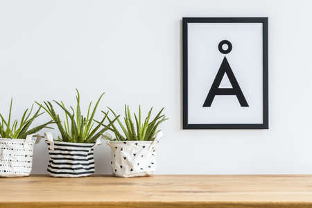 Foto de Close-up of aloe in diy, patterned fabric planters on a shelf and a minimalist letter poster in a black frame on a white wall - Imagen libre de derechos