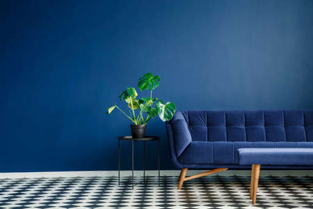 Foto de Big plant on a stool next to a comfy couch and checkered tiles set in a living room interior. Place your product - Imagen libre de derechos