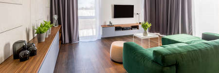 Photo for Living room interior with a green corner sofa, cabinet with plants and glass decorations, pouf, coffee table and tv - Royalty Free Image