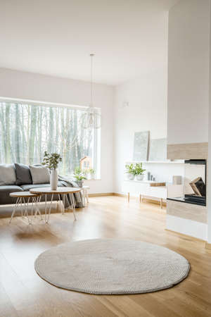 Photo pour Round rug in spacious apartment interior with fireplace and grey sofa against the window - image libre de droit