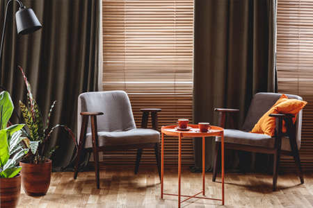 Photo pour Vintage armchairs, orange coffee table with two cups, plants standing by the window with curtain and blinds in a living room interior - image libre de droit