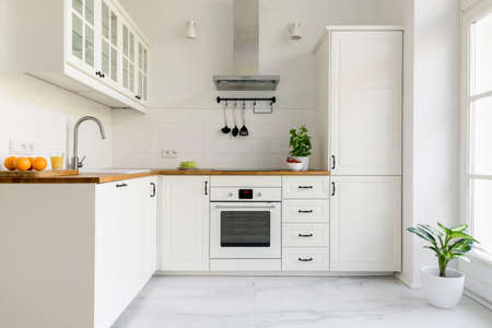 Foto de Silver cooker hood in minimal white kitchen interior with plant on wooden countertop. Real photo - Imagen libre de derechos