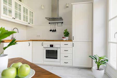 Foto de Plant in white minimal kitchen interior with silver cooker hood above wooden countertop. Real photo - Imagen libre de derechos