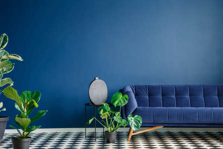 Foto de Minimal style interior with big dark blue couch standing on a checkerboard floor against monochromatic empty wall. Lots of green plants. Real photo. - Imagen libre de derechos