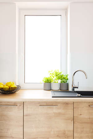 Photo pour Plants on wooden countertop in bright kitchen interior with window. Real photo - image libre de droit