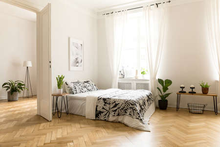 Photo pour Plant on table next to bed in white open space interior with window and poster. Real photo - image libre de droit