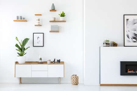 Photo pour Plant on wooden white cupboard in apartment interior with posters and fireplace. Real photo - image libre de droit