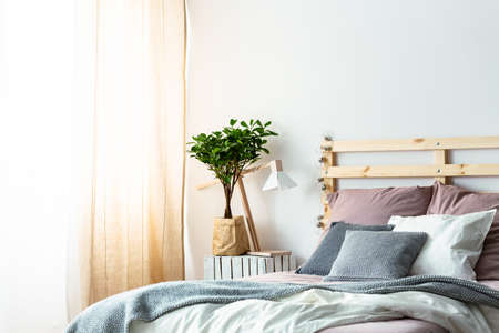 Photo pour Plant and lamp on table next to wooden bed with pink and grey cushions in bedroom interior. Real photo - image libre de droit