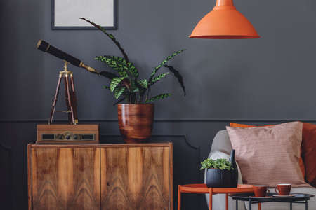 Photo for Plant and telescope on wooden cupboard in retro grey living room interior with orange lamp - Royalty Free Image