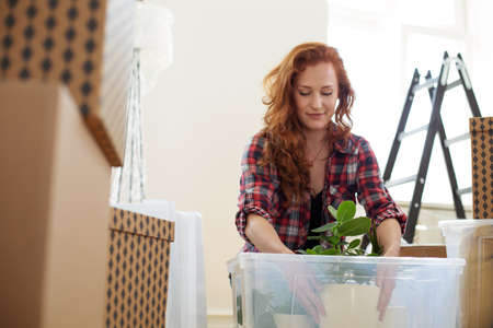 Photo pour Low angle on smiling woman packing a plant into a box during relocation to a new flat - image libre de droit