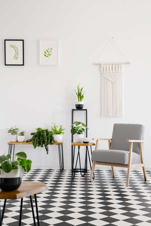 Foto de Real photo of a retro armchair standing on black and white checked floor in bright living room interior with plants - Imagen libre de derechos