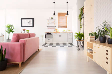 Photo pour Real photo of bright living room interior with many fresh plants, wooden cupboard with books, pink lounge and kitchenette - image libre de droit