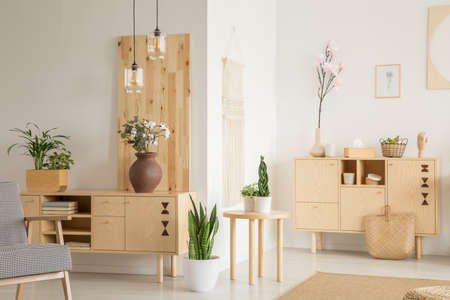 Photo for Plants on wooden cupboard in white living room interior with patterned armchair. Real photo - Royalty Free Image