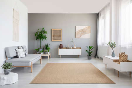 Photo pour Brown carpet between white cupboard and sofa in grey living room interior with posters. Real photo - image libre de droit