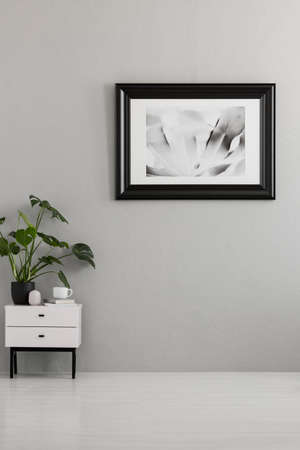 Foto de Plant on white cabinet in empty grey apartment interior with poster. Real photo. Place for your sofa - Imagen libre de derechos