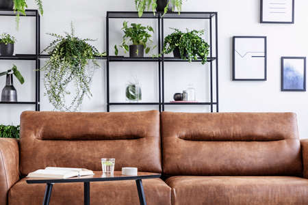 Photo pour Closeup of brow leather sofa in luxury living room. Water, book and candle on the table next to it, pots with green plant behind it - image libre de droit