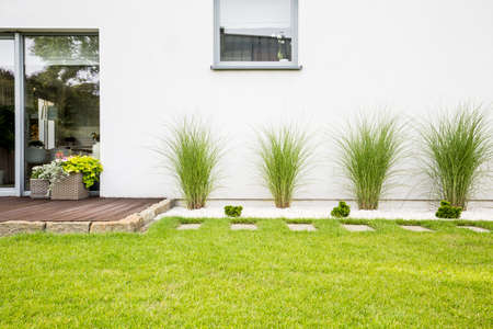 Photo pour Plants and green grass on terrace of white house with window - image libre de droit