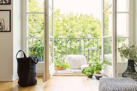 Photo pour Lot of green plants and open balcony door in modern apartment, real photo - image libre de droit