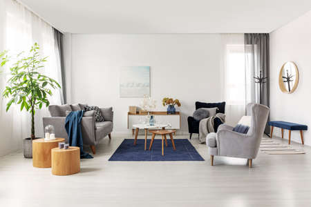 Photo pour Spacious grey and navy blue scandinavian living room interior - image libre de droit