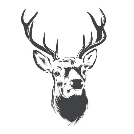 Illustration pour Deer Head on  White Background - image libre de droit