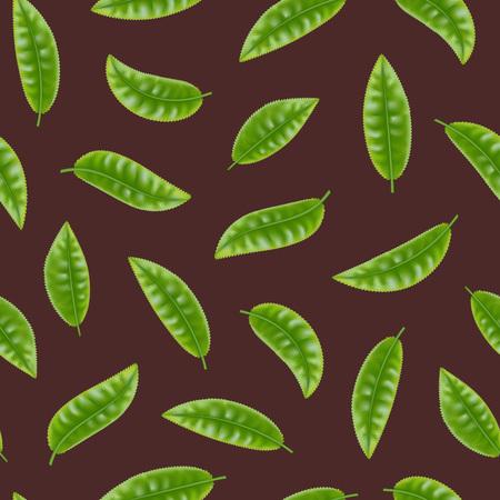 Ilustración de Realistic Detailed 3d Elements Set of Tea Seamless Pattern Background Fresh Green Leaves Plant. Vector illustration - Imagen libre de derechos