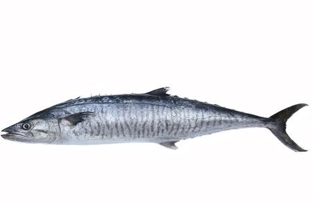 Foto de Fresh king mackerel fish isolated on the white background - Imagen libre de derechos