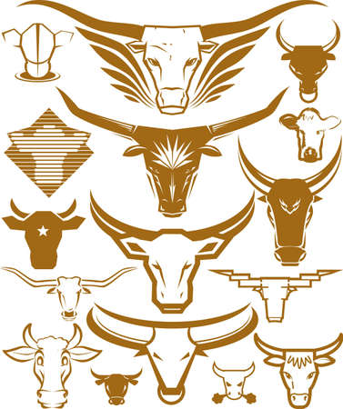 Bull Head Collection