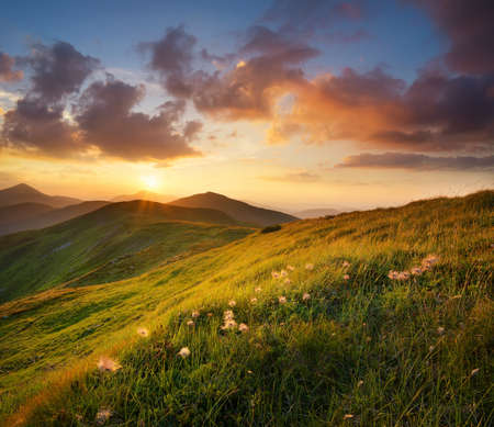 Foto de Mountain field during sunset. Beautiful natural landscape - Imagen libre de derechos