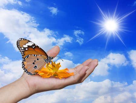 Foto de Hands down a flower, butterfly background, just the sky. - Imagen libre de derechos