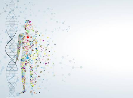 Ilustración de Molecule body concept of the human DNA  - Imagen libre de derechos