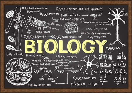 Illustration pour Hand drawn biology on chalkboard. - image libre de droit
