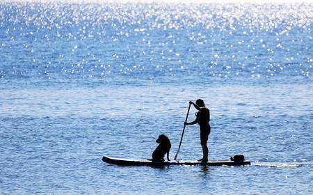 Photo pour Paddler and Dog on Standup Paddle Board, Unrecognizable face, blue sea, Victoria, Canada - image libre de droit