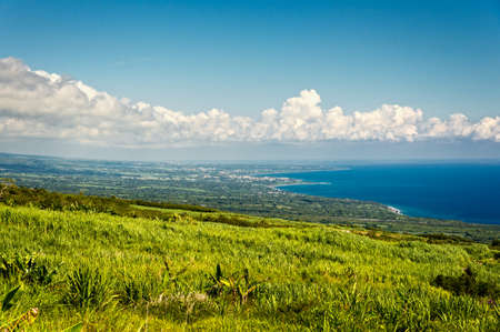 Photo for Sugar cane field and coast in la Reunion island - Royalty Free Image