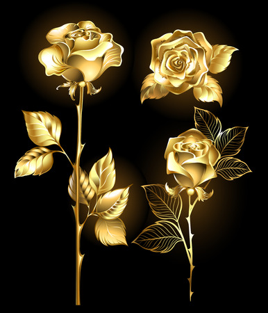 Illustration for Set of gold, shining roses on a black background - Royalty Free Image