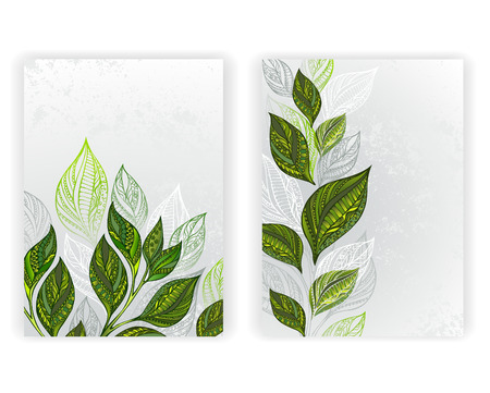 Ilustración de Design with patterned, green and gray leaves of tea on a gray textural background. Tea design.  layout in A4 size. - Imagen libre de derechos