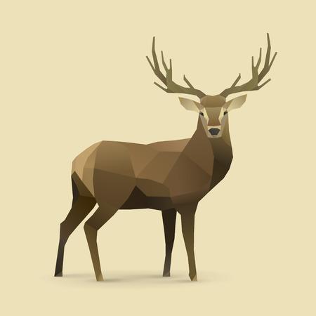 polygonal illustration of deer