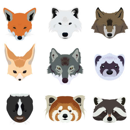 Set of Wolf Fox and Wildlife Animals Vector and Icon