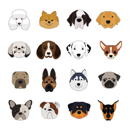 Illustration pour Set of Dog and Puppy Face Isolated Vector - image libre de droit