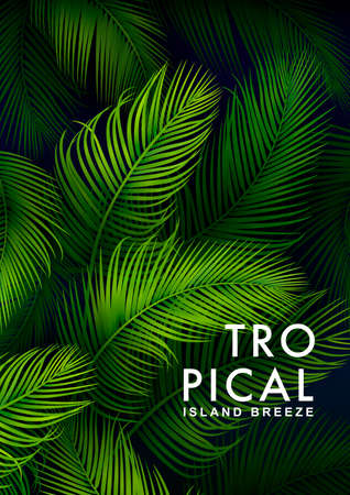 Illustration for Tropical Palm Background. Summer Illustration - Royalty Free Image